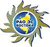 logo_RAO-EES